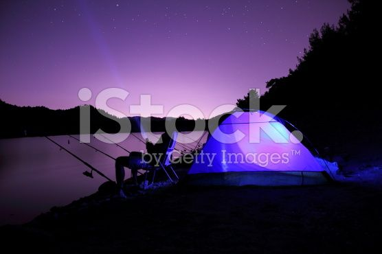 Fisher nature royalty-free stock photo