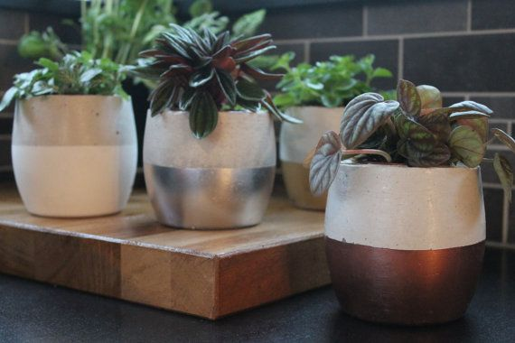 The Egg Concrete Succulent Planter by nimwitstudio on Etsy