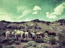 Saddle check stop