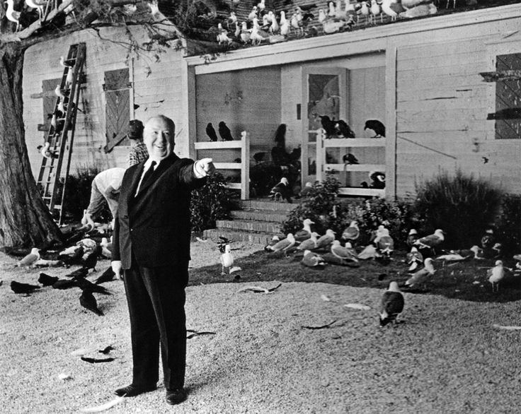 Alfred Hitchcock on the set of The Birds.