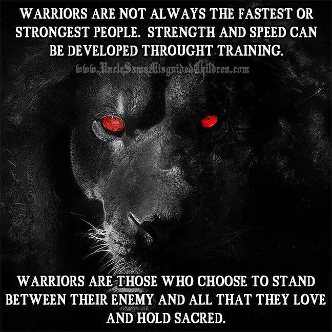Warriors. I'd rather be a lion for 1 day than a sheep for 100 days.