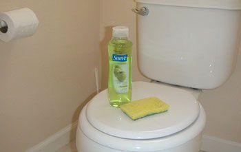 1000 Ideas About Urine Smells On Pinterest Cat