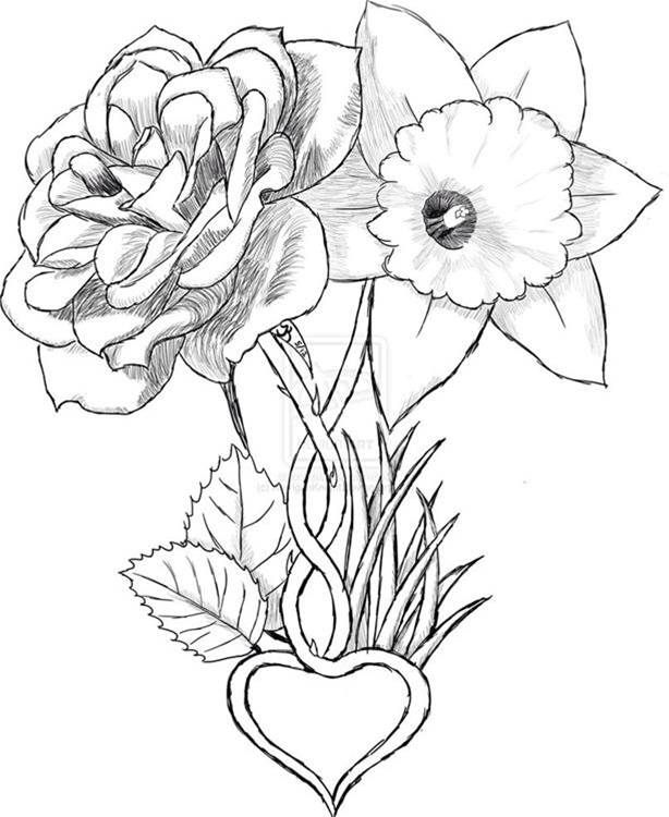 Narcissus Flower Drawing Tattoo | www.imgkid.com - The ...