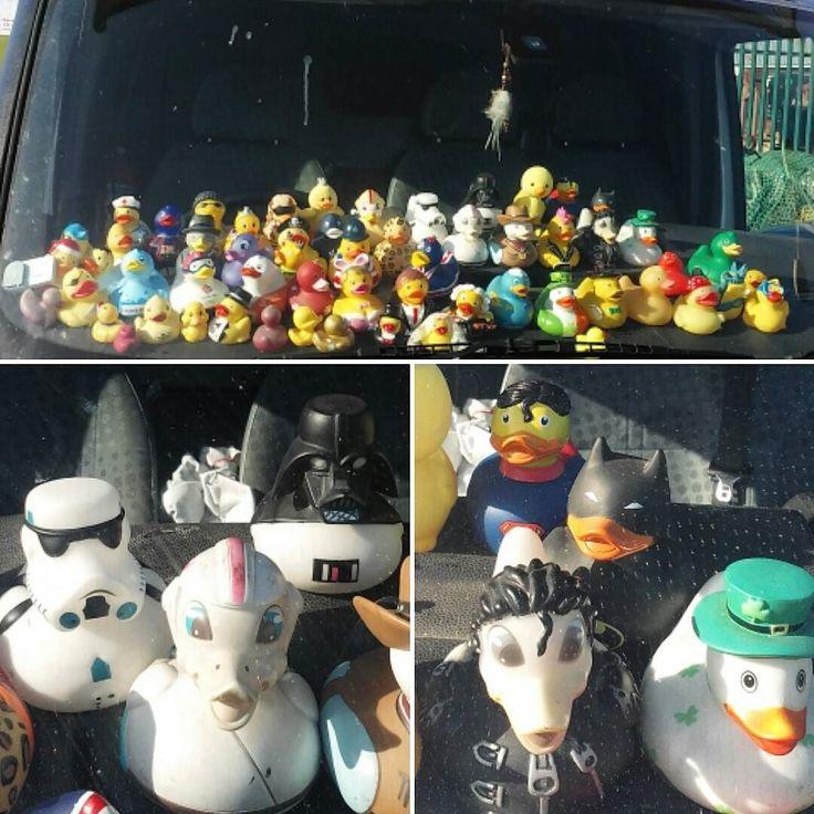 Gumikacsa sereg  #rubberduck #darthvaderduck #batmanduck #supermanduck #duckarmy #duckarmada by gayzenguz