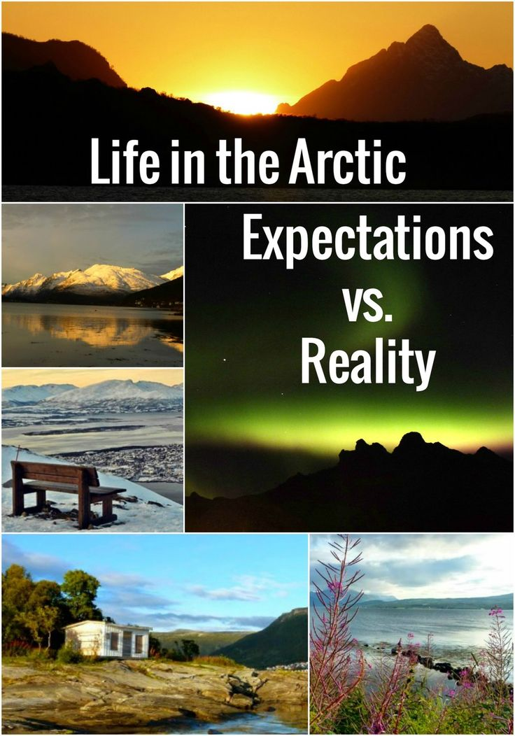 Ever wondered what life in the Arctic was like? How often can you see the Northern Lights? What is Polar Night? And does Midnight Sun mean that you can see the sun every day at midnight? Click through to read the answers!