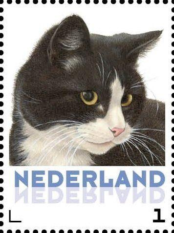 Stamp: Domestic Cat (Felis silvestris catus) (Netherlands - Personalized stamps) (Cats, Francine van Westering) Col:NL 2015-105