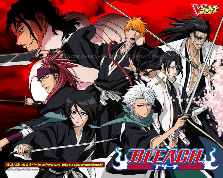 While this has not yet been official, Japanese TV Listings and similar blogs have stated that Bleach is going to be replaced by Naruto SD: Rock Lee no Seichun Full-Power Ninden. Description from millennialfolklore.wordpress.com. I searched for this on bing.com/images