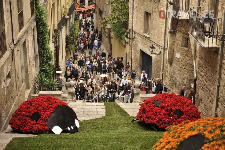 Girona se prepara ya para la 59ª edición de temps de flors | QTRAVEL Portal de Viajes y Turismo - QTRAVEL Revista de Viajes