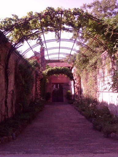 Some of the famous Italian botanical gardens where we take our herbalist inspiration from.  http://erbeitalianskincare.blogspot.it/2014/01/the-italian-tradition-suggested-useful.html