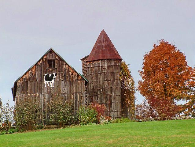 Barn on a hill: Cows Paintings, Barns Provestra, Cows Barns, Beautiful Barns, Barns Silo, Cap Silo, Barns Doors, Castles Barns, Old Barns
