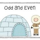 Odd and Even activity for your maths center in an Arctic theme.Numbers