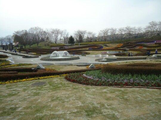 Taman sakura