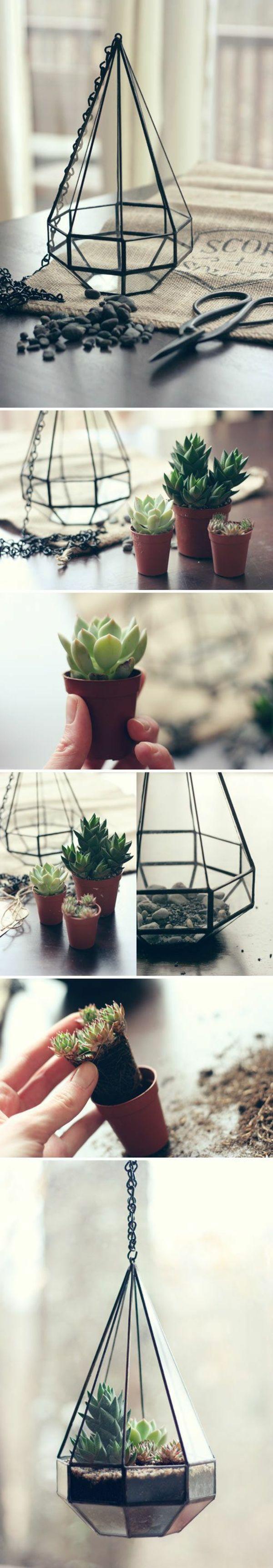 terrarium selber bauen dekoartikel ideen