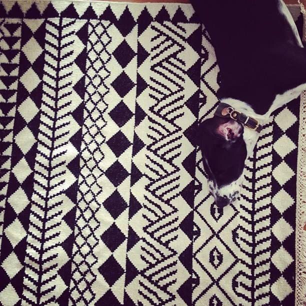 My dog Ruusu, Rose loves it on Mum's loves Kassena- carpet.