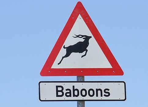 The sign shows a Kudu, but warns against Baboons. That's South Africa for you.