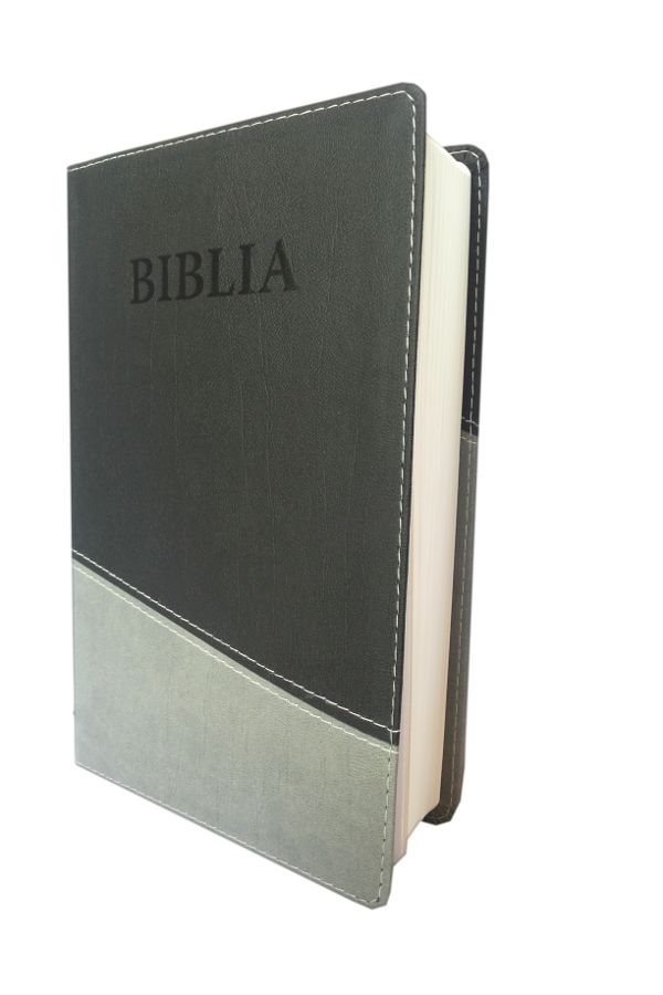 Biblia NTR (Biblia Noua traducere), coperta imitatie piele, gri inchis - gri deschis