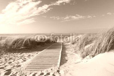 fototapeta morze sepia - Szukaj w Google