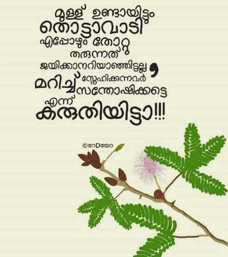Breakup Malayalam: 97 Best Malayalam Quotes Images On Pinterest