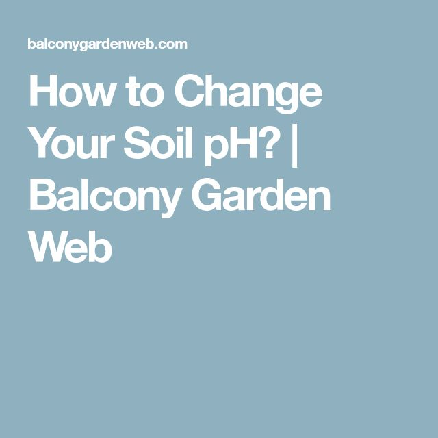 How to Change Your Soil pH? | Balcony Garden Web