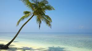 Mesdames et messieurs bonjour, le commandant de bord,Helena, et son équipage vous souhaite la bienvenue à bord de ce blog International HelenaMybeauty à destination de Bali. La durée du vol sera aussi belle qu agréble. Nous vous demandons d´attacher vos...