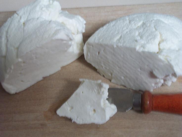 home made cheese.