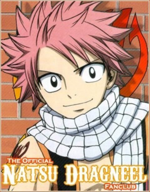 40 best images about Fairy Tail Natsu on Pinterest   Chibi ...