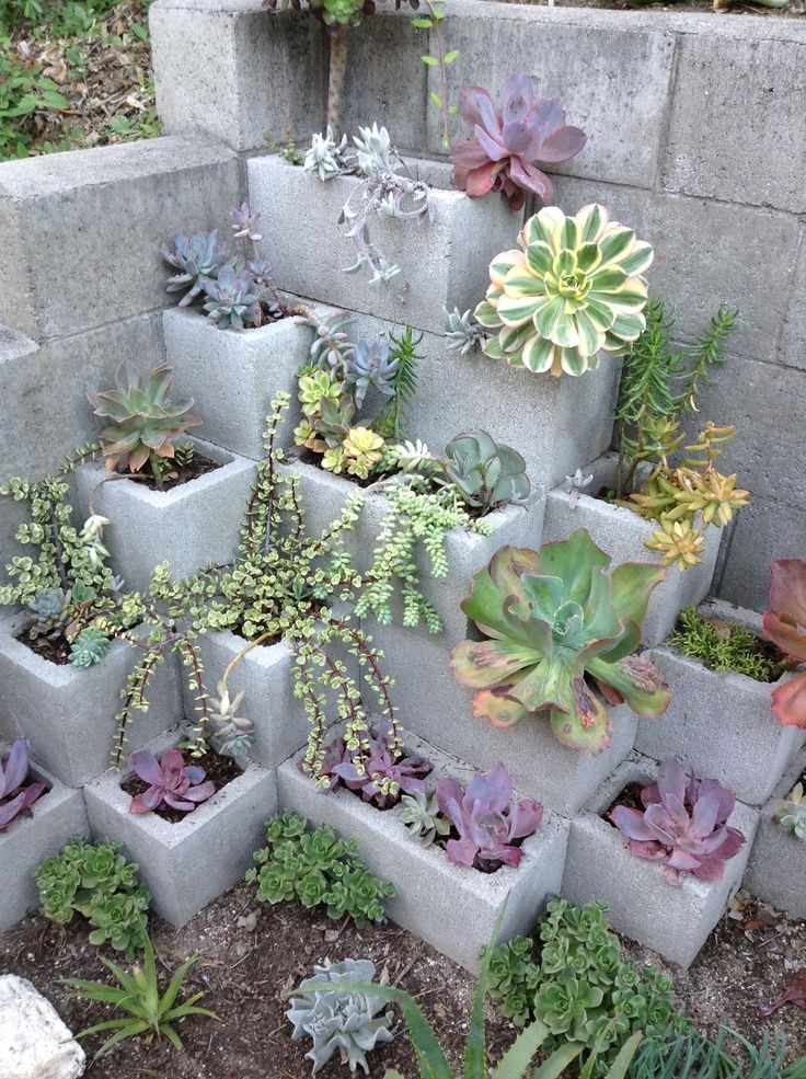 interesting and such a great idea..use any plants of choice...even herbs...strawberries? etc. This says:  Cinder block succulents, maybe spray paint blocks? cinder block bench Summer To Do List