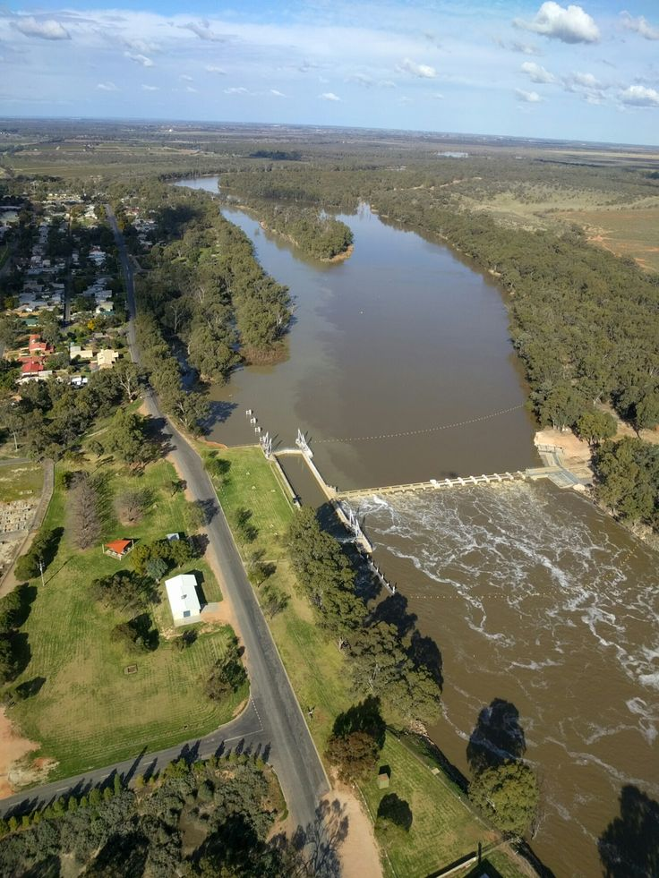 Lower Darling. Flows from the lower Darling have reached the Murray at Wentworth. Photo courtesy of NSW Department of Primary Industries.