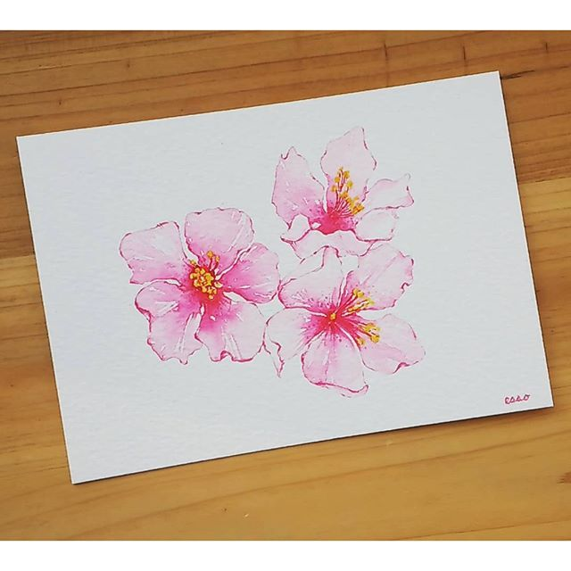 【tattooist_esso】さんのInstagramをピンしています。 《#cherryblossom #watercolor #design ✨ #벚꽃…