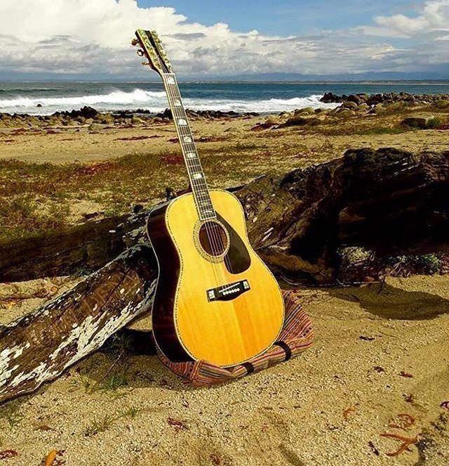 25+ Great Ideas About Yamaha Guitars On Pinterest