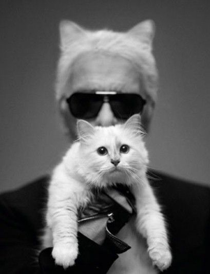 10 reasons your life would be better if you were Choupette Lagerfeld: