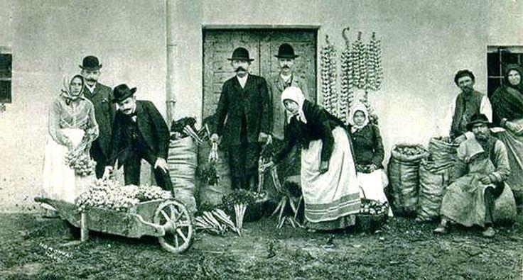 Hagyma- és zöldségfelvásárlás a 20. század elején.
