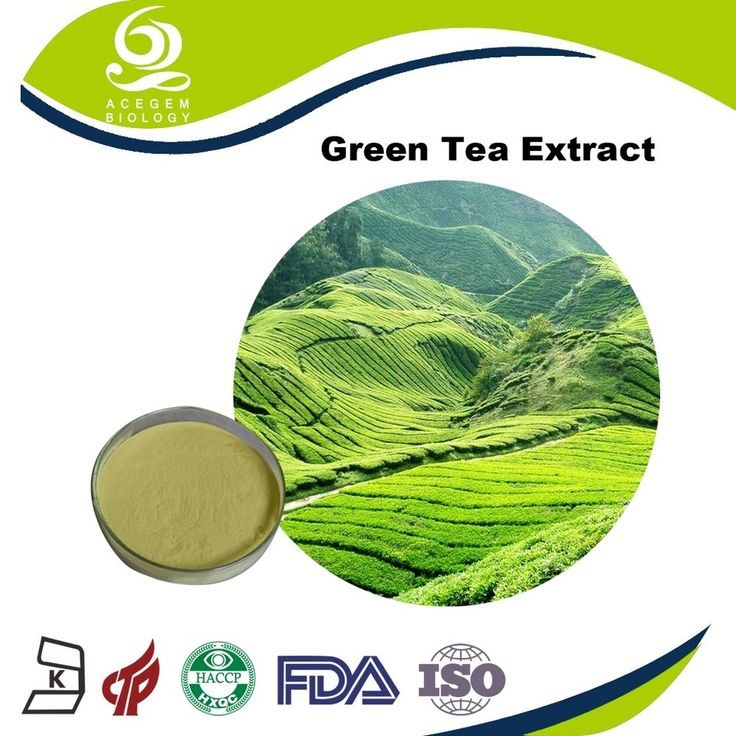 Green Tea Extract Best Dietary Supplements for Weight Loss benefits no side effects