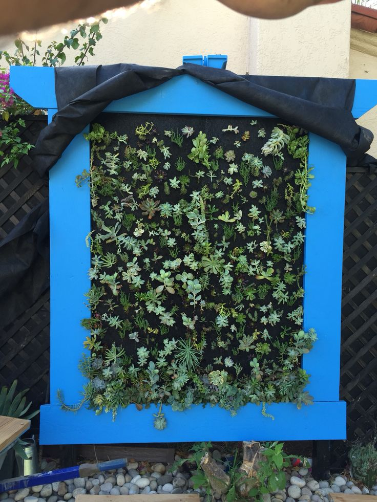 Progress to the vertical garden