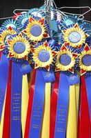 Turn your show ribbons into quilts.