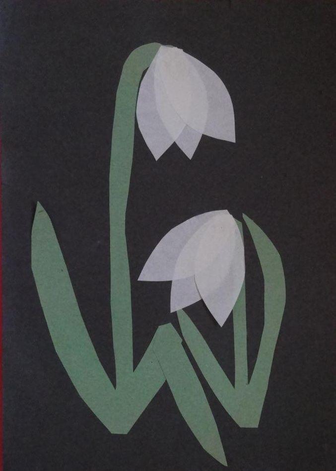 jaro - sněženky
