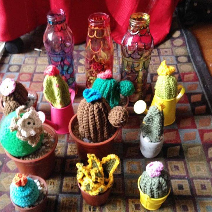 Cactus de distintos tamaños y formas