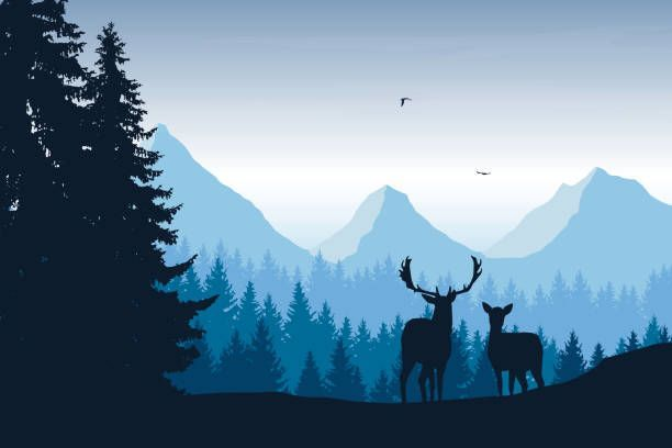 Realistic Vector Illustration Of Mountain Landscape With Forest Deer And Eagle Illustration