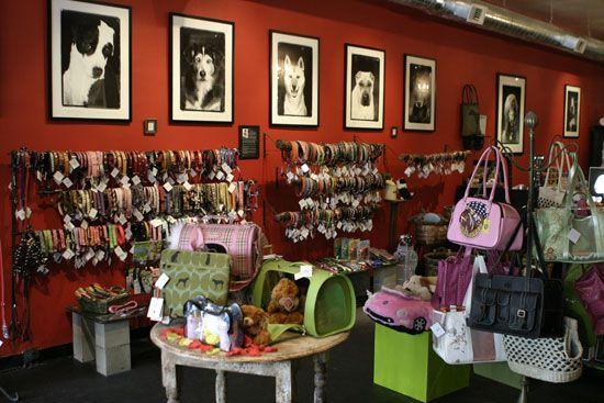 Las 25 mejores ideas sobre tienda de mascotas en - Como decorar una buhardilla ...