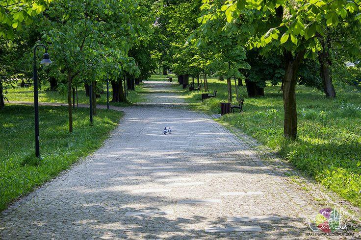 Częstochowa - romantic couple walk