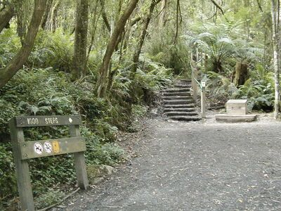 Top 10 Free Activities to do with Kids Outside the Melbourne CBD. The small change makes life insurance even more affordable. Get an obligation free quote today: http://tinyurl.com/miplansc4