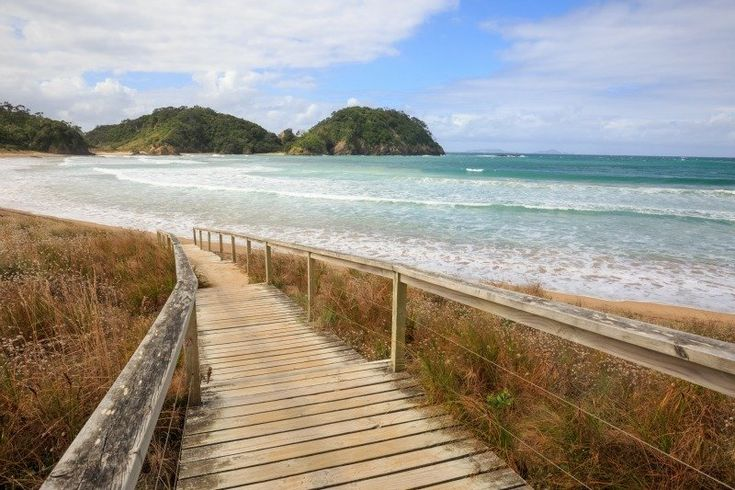 15 Of The Best NZ Beaches You Need To Visit This Summer, Auckland