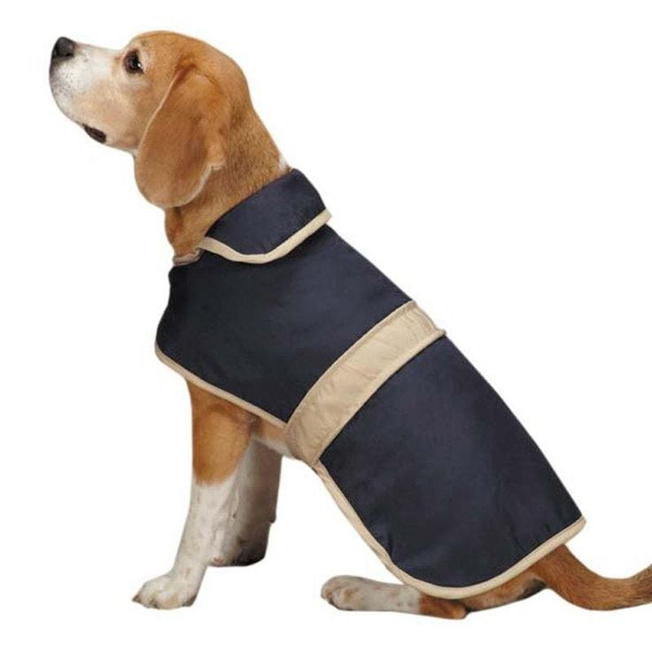 Casual Canine Barn Dog Coat with Contrast Trim - Navy. Your dog will have a great town and country look in the Casual Canine Barn Dog Coat with Contrast Trim! Neutral trim at the neck, hem, and across the back Nylon outer shell with fleece lining Adjustable touch fastener neck and belly closures 100% polyester Why We Love It:Don't let the name fool you! Casual Canine Barn Coats with Contrast Trim for dogs look just as sharp on city streets as they do in the country! Full body coverage is…