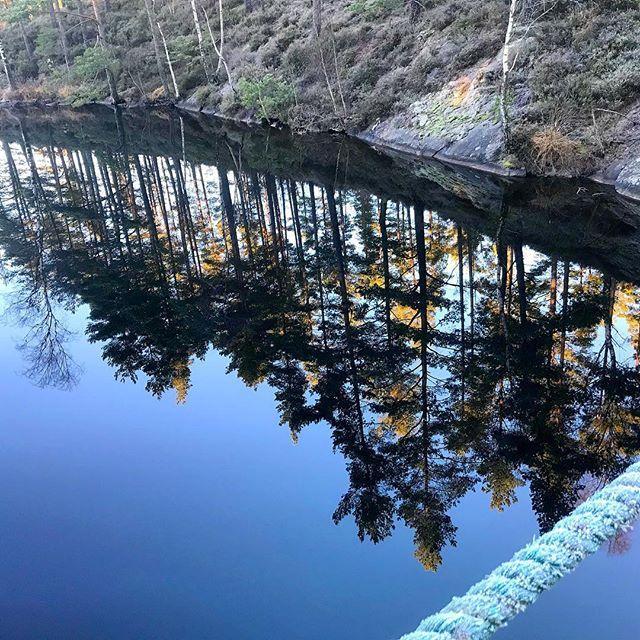 #fms_reflection . One crystal clear winter day.  #reflektion #fmspad #winter #water #bridge #tree #trees #lillbottnasjön