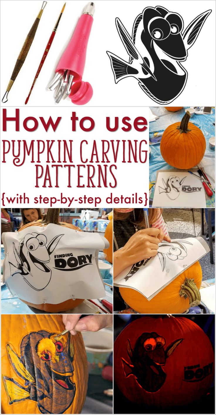 How to use pumpkin carving patterns. Includes tips from a master pumpkin carver!