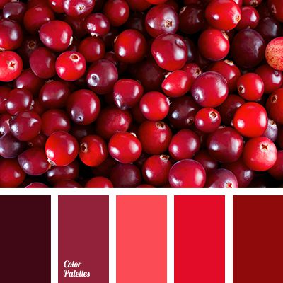 Color Palette #3093 | Color Palette Ideas | Bloglovin'