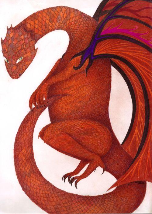 Dragon (1) - Nyméon