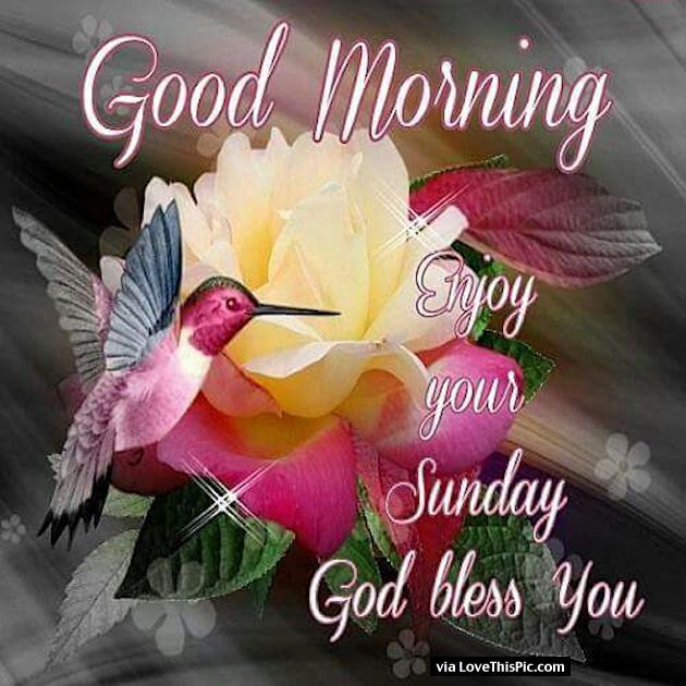 Good Morning Enjoy Your Sunday God Bless Happy Valentines Day
