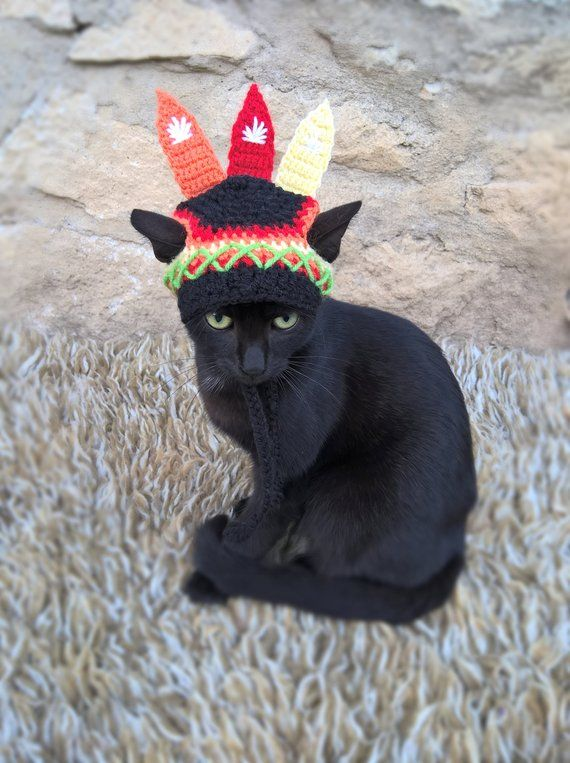 9e6551c60 Indian Hat for Cat, Native American/Indian Cat Hat, Pet Indian Hat,  Thanksgiving Costume, Thanksgiving Pet Hat