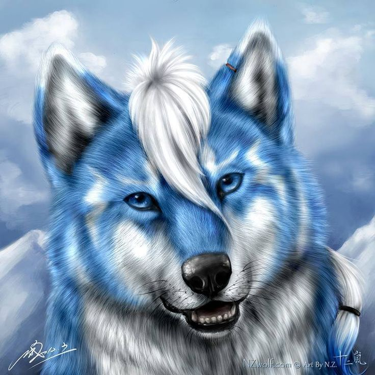 Amazing Wolf: 95 Best Images About ANIMAL ART On Pinterest